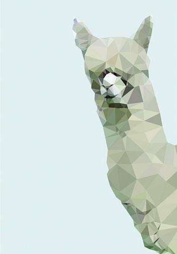 Studio Cockatoo's alpaca print