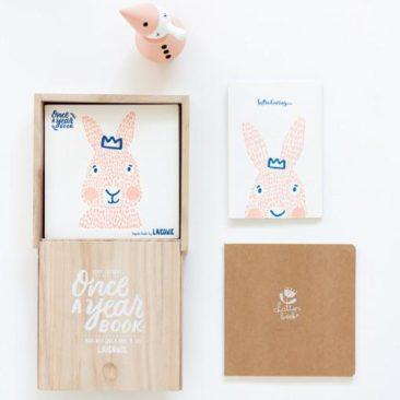 bunny, keepsake book, baby memories, Laikonik